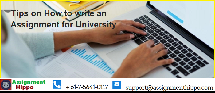 Techniques to proficiently compose university assignments