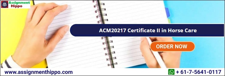 ACM20217 Certificate II in Horse Care